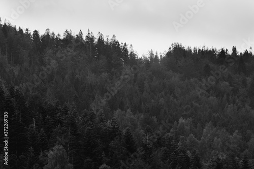 Fototapeta landscape of a mountain range