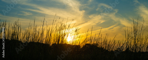 Fotografiet Big Bluestem Native Prairie Grasses Sunset