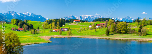 Obraz rural landscape in Bavaria at springtime - fototapety do salonu