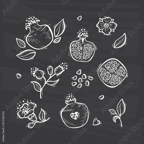 Leinwand Poster Hand drawn Doodle Fruits