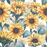 Watercolor floral pattern with different leaves and sunflowers. Floral  seamless pattern on white background. - 372291761