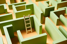 Ladder Amidst Green Maze Walls