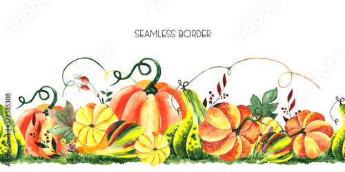 Watercolor hand painted autumn harvest seamless border with bright pumpkins Fototapeta