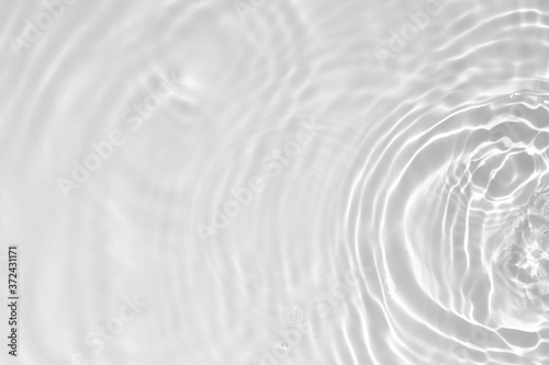 Obraz Blurred desaturated transparent clear calm water surface texture with splashes and bubbles. Trendy abstract nature background. White-grey water waves in sunlight. Copy space. - fototapety do salonu