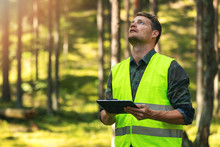 Forest Audit And Management - Forestry Engineer Working With Digital Tablet In The Woods