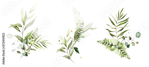 tropical watercolor herbal branch with leaves