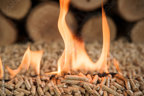 Fototapeta Close-up of burning wooden pellets. Biomass