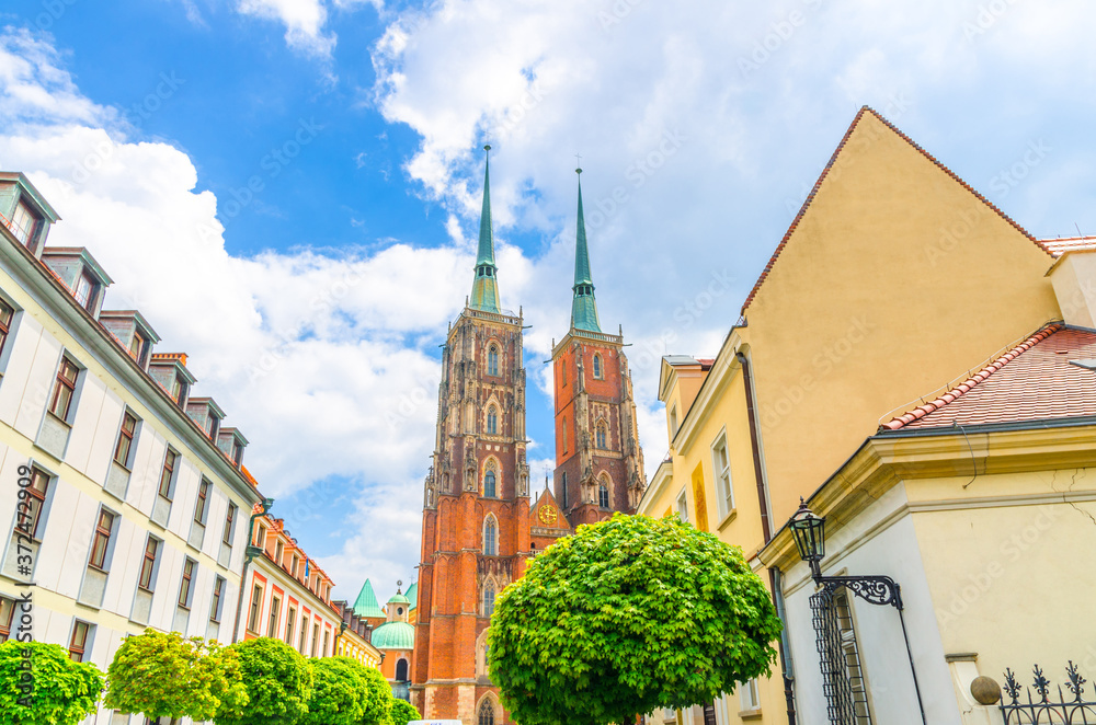 Fototapeta View of maple trees with green leaves, colorful buildings and Cathedral of St. John the Baptist church building with two spires in old historical city centre, Ostrow Tumski, Wroclaw, Poland