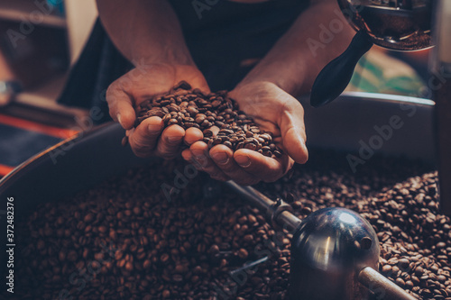 Obraz na plátně Man holding freshly roasted coffee beans in his hands.