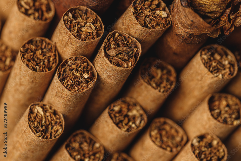 Fototapeta Pile of new cigars close up on wooden table
