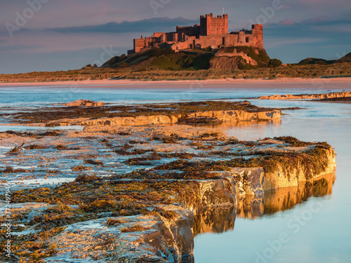 Bamburgh Castle, Northumbria at sunset on a warm summer evening Poster Mural XXL