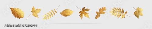 Fotografía Golden flying autumn leaves of different shapes on light gray background