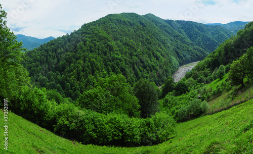 Fotomural Fisheye panorama with a hillside meadow