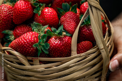 Fotografija Girl holding basket with strawberries.