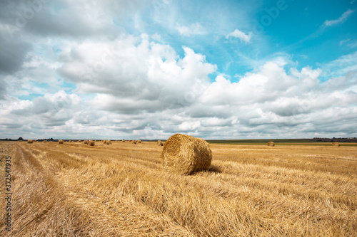 Obraz na plátně Summer field roll agriculture cultivated hay bale sky clouds land