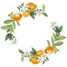 Wreath Of Hand Drawn Blooming ...