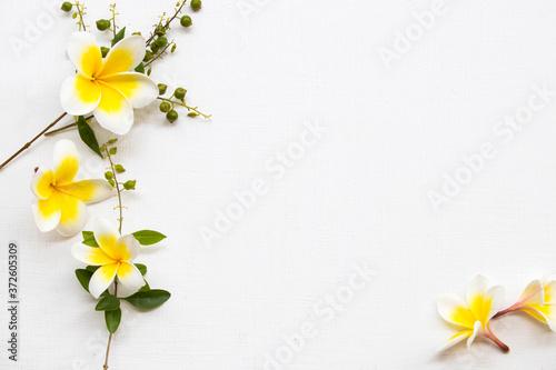 Photographie yellow flowers frangipani local flora of asia  arrangement flat lay  postcard st