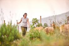 Female Farmer Standing On Mead...