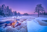 Amazing landscape of snowy terrain with frozen trees during colorful sunset in winter