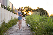 Back View Of Asian Female In Casual Wear Strolling With American Cocker Spaniel On Pathway Between Green Grass Under Serene Sky On Sunny Day Looking At Camera