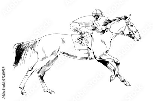 Foto a galloping horse painted with ink by hand on a white background