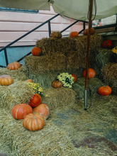 Pumpkins And Autumn Flowers On Hay Bale, Rustic Festive Decoration Of European City Street. Halloween Street Decor. Happy Thanksgiving And Halloween