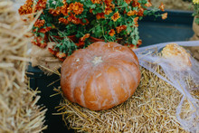 Pumpkins And Autumn Flowers With Cobweb On Hay Bale, Stylish Rustic Decor Of City Street. Festive Halloween Street Decor. Happy Thanksgiving.