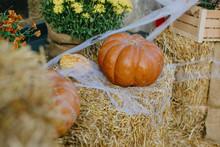Festive Halloween Street Decor. Pumpkins And Autumn Flowers With Cobweb On Hay Bale, Stylish Rustic Decor Of City Street. Happy Thanksgiving.