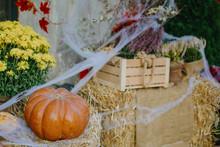 Pumpkins And Autumn Flowers With Cobweb On Hay Bale, Stylish Rustic Decor Of City Street. Festive Halloween Street Decor. Happy Thanksgiving.