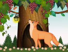 Illustration Of Fox Makes The House Under The Grapes