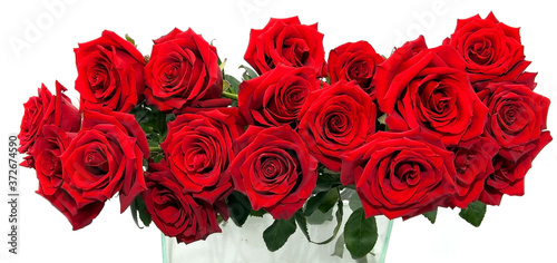Obraz na plátně an ordered bouquet of large red roses in a glass vase on a white background
