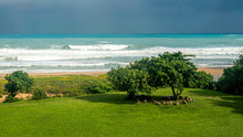 Ocean Wave Rolling Towards Sandy Beach With Green Trees Of Taiwan Island