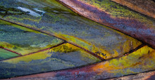 Tropical Texture: Abstract Detail Colorful Palm Tree Stem Texture