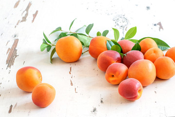Group of fresh ripe apricots on the white rustic background. Harvest time, healthy fruit eating.
