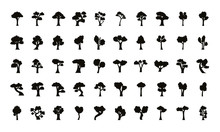 Bundle Of Fifty Trees Set Icons