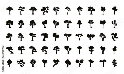 Photo bundle of fifty trees set icons