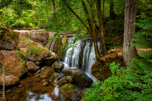 Whatcom Falls Park, Located in the Heart of Bellingham, Washington Canvas Print