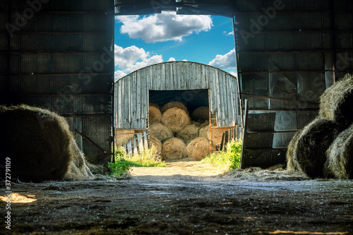 Photographie View of the hay bales being stored in an old wooden barn from the another hay barn in late summer or early autumn sunny evening