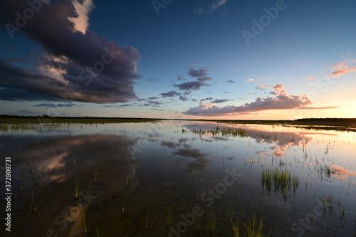 Summer clouds over Hole-in-the-Donut habitat restoration project in Everglades National Park, Florida Fototapet