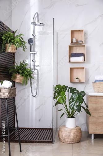 Obraz na plátně Bathroom interior with shower stall and houseplants