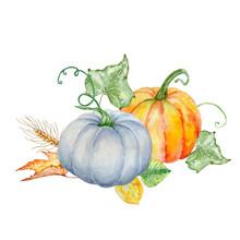Watercolor Autumn Composition Of Two  Pumpkins