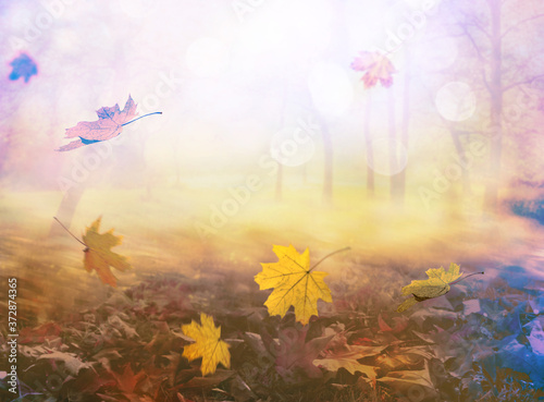 pile of autumn and falling leaves, abstract background Canvas Print