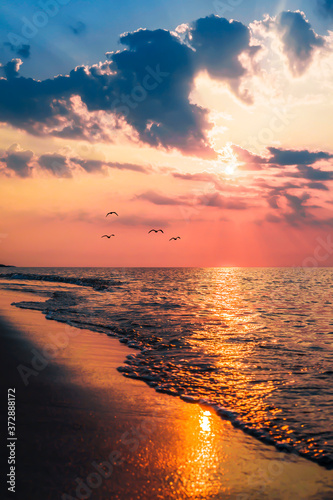 Fototapety, obrazy: The concept of travel and rest at the seaside, sea waves on the background of the shoreline and sunset
