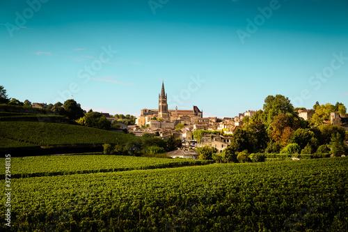 Canvas-taulu Le village médiéval de Saint Emilion et son vignoble