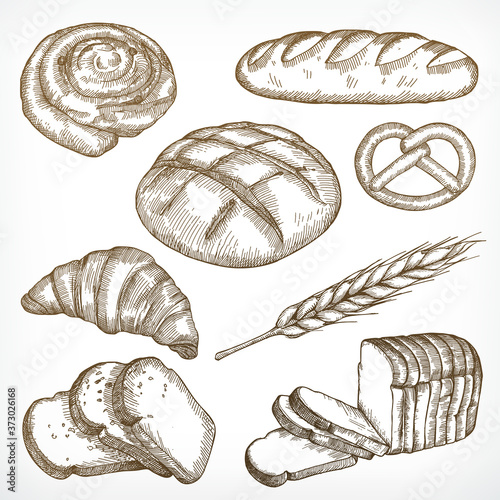 Bread sketches, hand drawing, vector set Fototapet