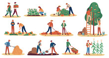 Autumn Harvest. Farm Workers Gathering Crops Ripe Vegetables, Picking Fruits And Berries, Remove Leaves, Season Agriculture Vector Set. Man And Woman Digging Potato, Gathering Pumpkin And Corn