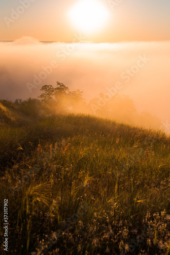 Sunrise over the cliff. Morning haze at dawn on a cliff in summer. freshness