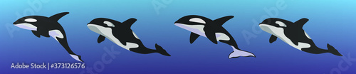 Fotografiet set of killer whale cartoon icon design template with various models