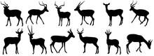 Set Of Antelope, Gazelle Shadow Flat Design Vector Illustration. Hand Drawn.