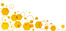 Honeycomb Pattern. Seamless Geometric Hive Background. Abstract Yellow, Orange Beehive Raster Background. Funny Vector Bee Honey Shapes Sign. Amber Color